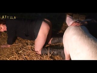 xhamster animal pig xxx  (part 8)