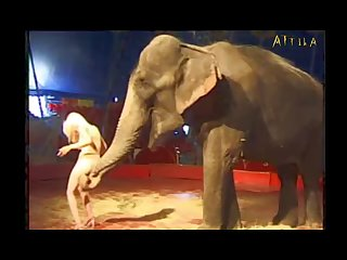 Milly with Elephant (part 19)