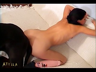 Hot Lesbian Girls Try The Animal Sex With Dog (part 6)